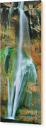 Wood Print featuring the photograph Panorama Lower Calf Creek Falls Escalante Nm Utah by Dave Welling