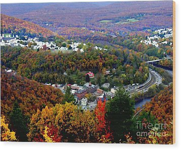 Panorama Of Jim Thorpe Pa Switzerland Of America - Abstracted Foliage Wood Print by Jacqueline M Lewis
