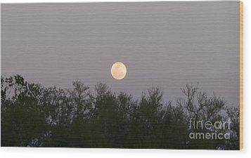 Panoramic New Orleans Moon Rising Wood Print by Joseph Baril