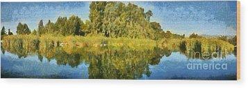 Panoramic Painting Of Ducks Lake Wood Print by George Atsametakis