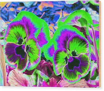 Pansy Power 60 Wood Print