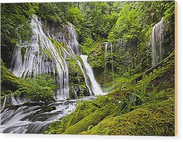 Panther Creek Falls Wood Print by Brian Bonham