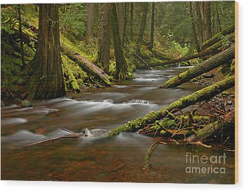 Wood Print featuring the photograph Panther Creek Landscape by Nick  Boren