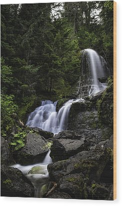 Panther Falls Wood Print by James Heckt