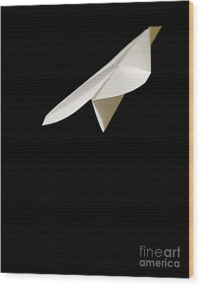 Paper Airplane Wood Print by Edward Fielding