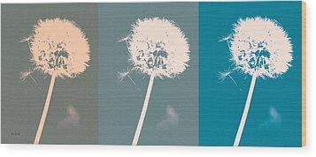 Parachute Balls Wood Print by Bob Orsillo