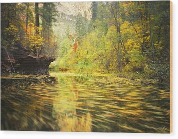 Parade Of Autumn Wood Print by Peter Coskun