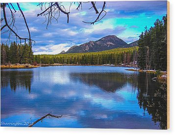 Wood Print featuring the photograph Paradise 2 by Shannon Harrington