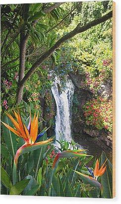 Paradise Falls Wood Print by Doug Kreuger