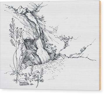 Paradise Falls Thousand Oaks California Wood Print