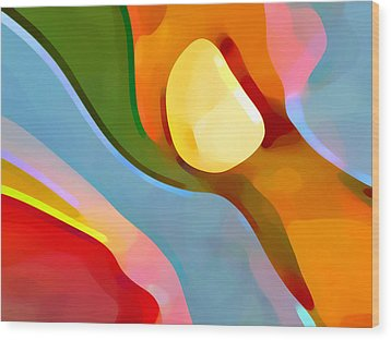 Paradise Found 4 Wood Print by Amy Vangsgard