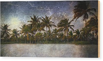 Paradise Found Wood Print by Ellen Heaverlo