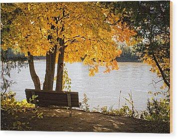 Paradise Wood Print by Wayne Meyer