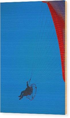 Paragliding Wood Print by Karol Livote