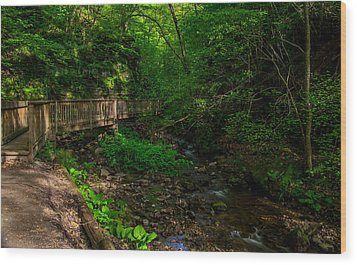 Parfrey's Glen Trail Wood Print