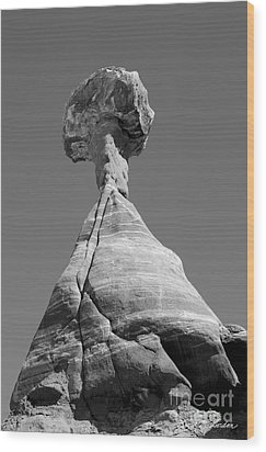 Paria Utah II Wood Print by Dave Gordon