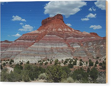 Wood Print featuring the photograph Paria Utah by Robert  Moss