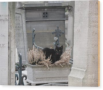 Paris Cemetery Cat - Le Chats Noir - Pere Lachaise - Black Cat On Grave Cemetery Art Wood Print by Kathy Fornal