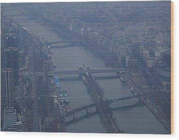 Paris France - Eiffel Tower - 011311 Wood Print by DC Photographer