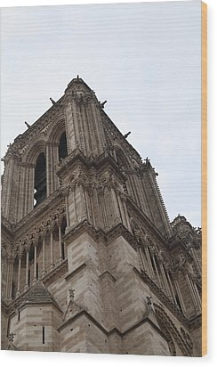 Paris France - Notre Dame De Paris - 01139 Wood Print by DC Photographer