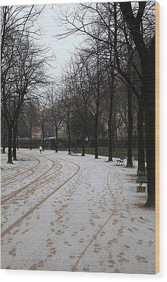 Paris France - Street Scenes - 011325 Wood Print by DC Photographer