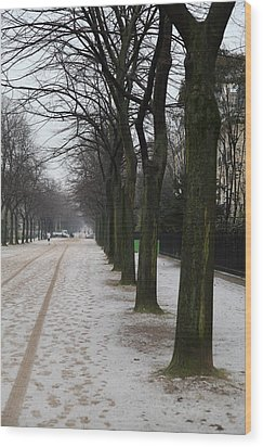 Paris France - Street Scenes - 011326 Wood Print by DC Photographer