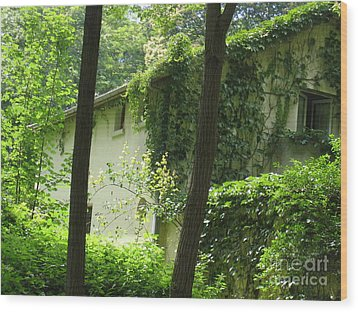 Paris - Green House Wood Print by HEVi FineArt