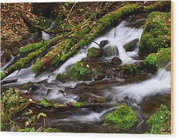 Paris Springs Wood Print