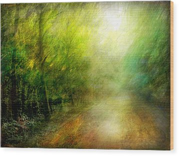 Wood Print featuring the photograph Park #7. The Colors Of Silence by Alfredo Gonzalez