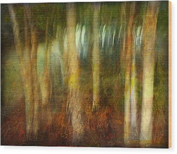 Wood Print featuring the photograph Park #8. Memory Of Trees by Alfredo Gonzalez