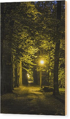 park Alley Wood Print by Jaroslaw Grudzinski