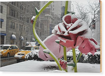 Park Avenue Rose In The Snow Wood Print by Diane Lent