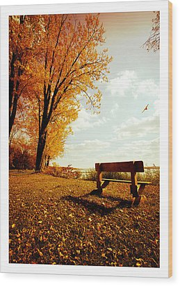 Park Bench Wood Print by Chris Babcock