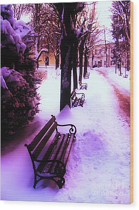 Park Benches In Snow Wood Print by Nina Ficur Feenan