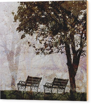 Park Benches Square Wood Print by Carol Leigh