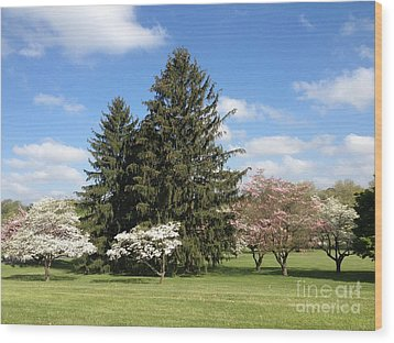 Wood Print featuring the photograph Cedar Beach Park  by Jeannie Rhode