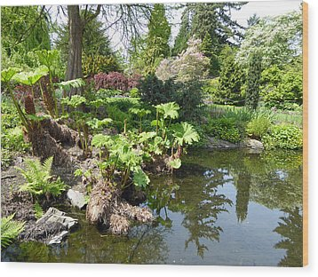 Wood Print featuring the photograph Park Pond by Laurie Tsemak