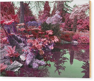 Wood Print featuring the photograph Park Pond Red by Laurie Tsemak