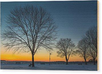 Park Sunset Wood Print