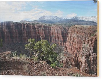 Parker Canyon In The Sierra Ancha Arizona Wood Print by Tom Janca