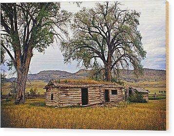 Parker Homestead Wood Print by Marty Koch