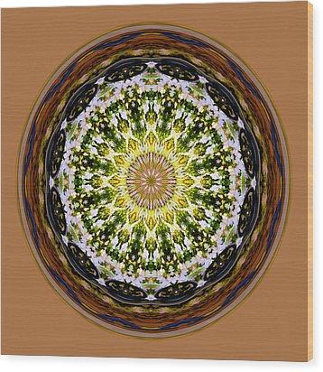 Parkside Mandala Wood Print