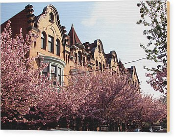 Wood Print featuring the photograph Philadelphia Parkside  by Christopher Woods