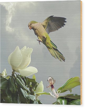 Parrot And Magnolia Tree Wood Print by IM Spadecaller