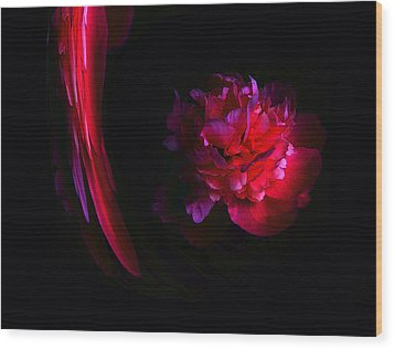 Parrot And Paeony Illusion Wood Print