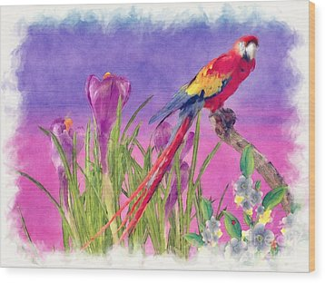 Parrot Wood Print by Liane Wright