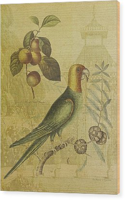 Parrot With Plums Wood Print by Sarah Vernon