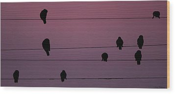 Parrots Online Wood Print by Avian Resources