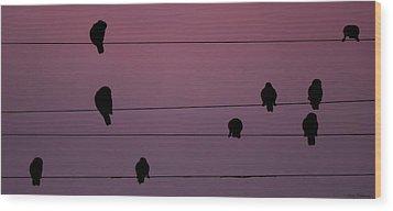 Parrots Online Wood Print