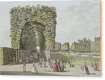 Part Of The Garden At Ausgarten Wood Print by Johann Ziegler